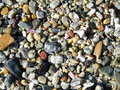 Free Shells And Pebbles Texture Stock Images - 1095604