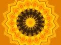 Free Vivid Yellow Kaleidescope Stock Images - 1098644