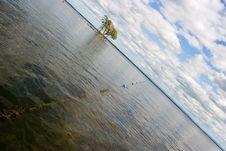Free Buoys At The Beach Stock Image - 1093151
