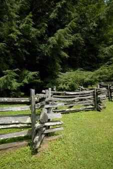 Split Rail Fence And Pines Royalty Free Stock Photo