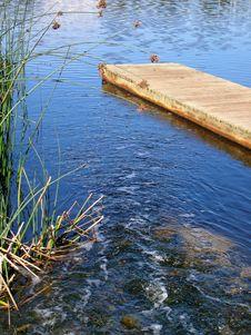 Free Wetland1 Stock Photography - 1096542