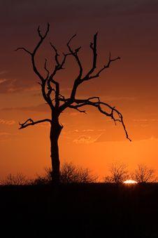 Free Sunset Soft Stock Photos - 1097263