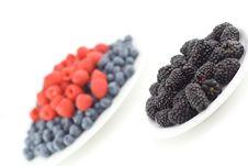 Free Mixed Berries Stock Photo - 1098620