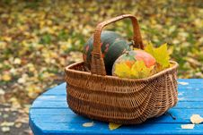Free Basket, Gift Basket, Picnic Basket, Still Life Royalty Free Stock Photos - 109021398