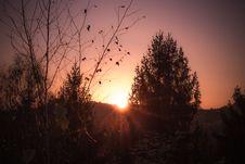 Free Sky, Sun, Tree, Sunrise Stock Image - 109022901