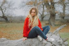 Free Woman In Red Sweater Sitting On Cutted Tree Royalty Free Stock Images - 109053439