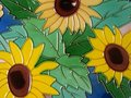 Free Sunflower Stock Images - 10923484