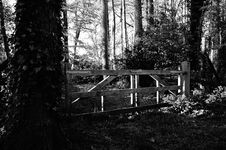 Free Black-and-white, Daylight, Eerie Stock Photos - 109884013