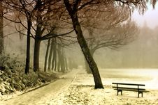 Free Bench, Cold, Dawn Royalty Free Stock Photo - 109884375
