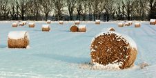 Free Cold, Countryside, Environment Stock Photography - 109884582