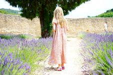 Free Woman Wearing Pink Maxi Dress Walking Along Unpaved Pathway With Purple Plants Nearby Stock Photography - 109885622