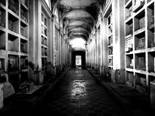 Free Grayscale Photo Of Cemetery Hall Stock Image - 109885771