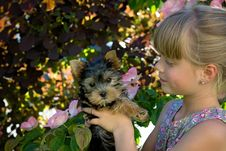 Free Girl Holding Black And Brown Short Coated Dog Royalty Free Stock Image - 109885826