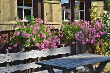 Free Pink Flowering Plant Behind Brown Wooden Bench Stock Images - 109885844
