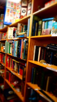 Free Books In Brown Wooden Shelf Indoors Royalty Free Stock Photography - 109885887