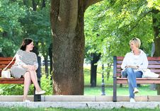 Free 2 Woman Sitting In The Different Bench Chair Near Tree In The Park During Daytime Stock Image - 109886241