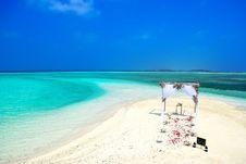 Free Beach, Wedding, Bird S Royalty Free Stock Photos - 109886528