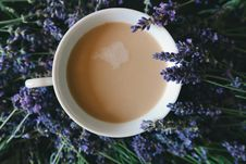 Free Aromatherapy, Aromatic, Caffeine Royalty Free Stock Photos - 109886558