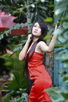 Free Adult, Asian, Girl Royalty Free Stock Photo - 109887355