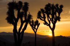 Free Arid, Backlit, Clouds Stock Image - 109887611