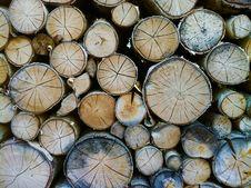 Free Bark, Chopped, Circle Royalty Free Stock Photo - 109887635