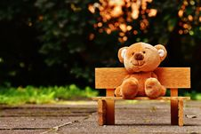 Free Brown Teddy Bear On Brown Wooden Bench Outside Stock Image - 109887641