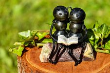 Free Shallow Focus Photography Of Couple Ants Holding Book Figurine Royalty Free Stock Photo - 109887675