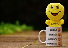 Free White Ceramic Mug With Yellow Plush Toy On It Stock Images - 109887744