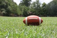 Free Kigoa Football On Green Grass During Daytime Royalty Free Stock Photos - 109888008