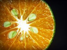 Free Citrus, Close-up, Colors Royalty Free Stock Image - 109888356