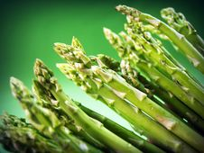 Free Agriculture, Asparagus, Autumn Stock Photography - 109888402