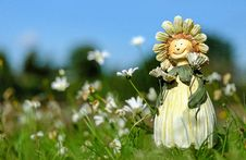 Free White Daisy Flower Field With Plush Toy During Daytime Stock Photography - 109889182