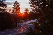 Free Road Amidst Trees Against Sky During Sunset Royalty Free Stock Photos - 109889308