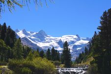 Free Scenic View Of Pine Trees And Mountains Against Clear Blue Sky Stock Photos - 109889593