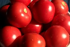 Free Full Frame Shot Of Red Tomatoes Royalty Free Stock Image - 109889686
