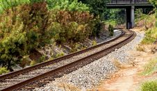 Free Railroad Tracks Amidst Trees Royalty Free Stock Photo - 109889735