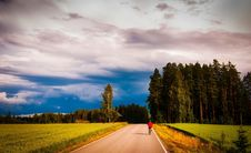Free Road Amidst Trees In Forest Against Sky Stock Photography - 109889792