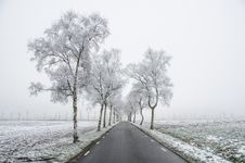 Free Cold, Countryside, Dawn Stock Photos - 109890743