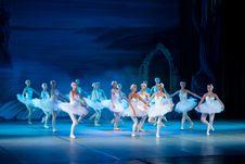 Free Adult, Ballerina, Ballet Stock Image - 109894401