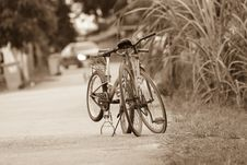 Free Action, Bicycle, Bikes Stock Image - 109895301