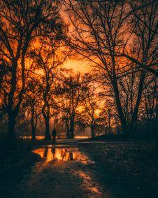 Free Backlit, Beautiful, Canada Stock Photo - 109895970
