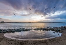 Free Beach, Birds, Clouds Royalty Free Stock Photos - 109896018