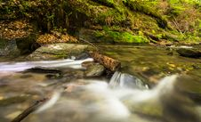 Free Cascade, Creek, Environment Royalty Free Stock Image - 109896146