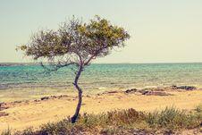 Free Beach, Beautiful, Cyprus Royalty Free Stock Photography - 109897247