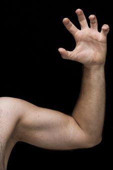 Free Arm, Biceps, Fingers Stock Photos - 109898513