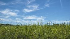 Free Blue, Skies, Clouds Royalty Free Stock Photos - 109900428
