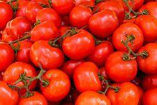 Free Abundance, Agriculture, Fresh Royalty Free Stock Image - 109901316