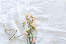 Free Blanket, Bloom, Blooming Royalty Free Stock Photography - 109901847