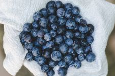 Free Abundance, Berries, Blueberries Stock Photography - 109901952