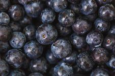 Free Abundance, Antioxidant, Blueberries Stock Images - 109902104